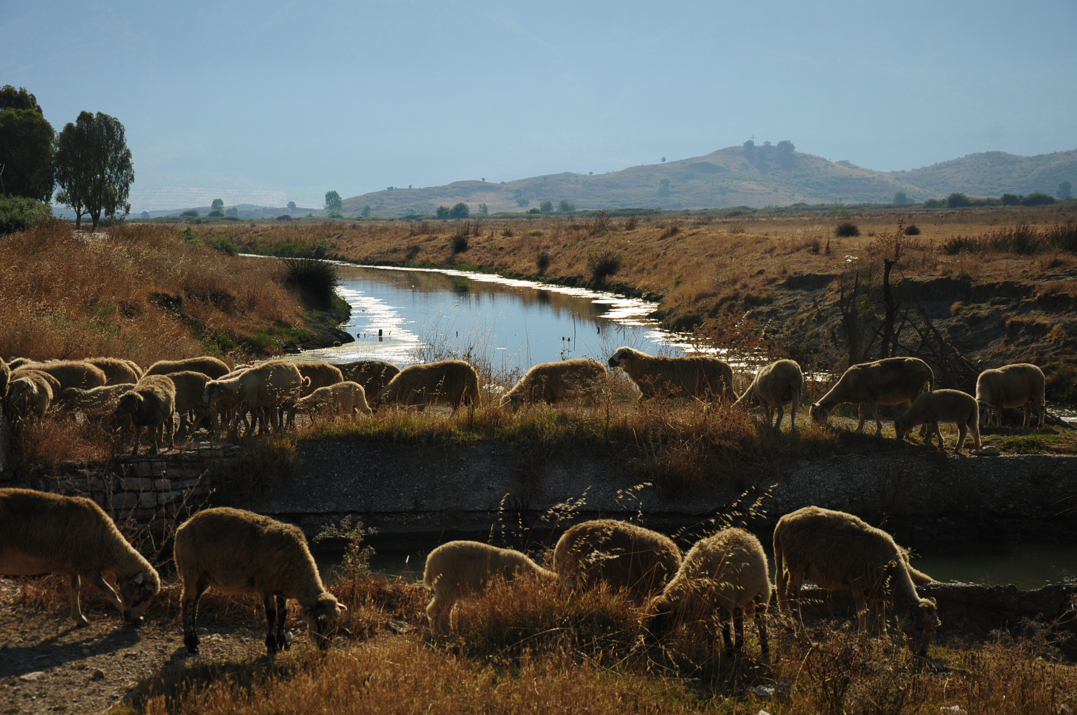 Rural idyll near Butrint