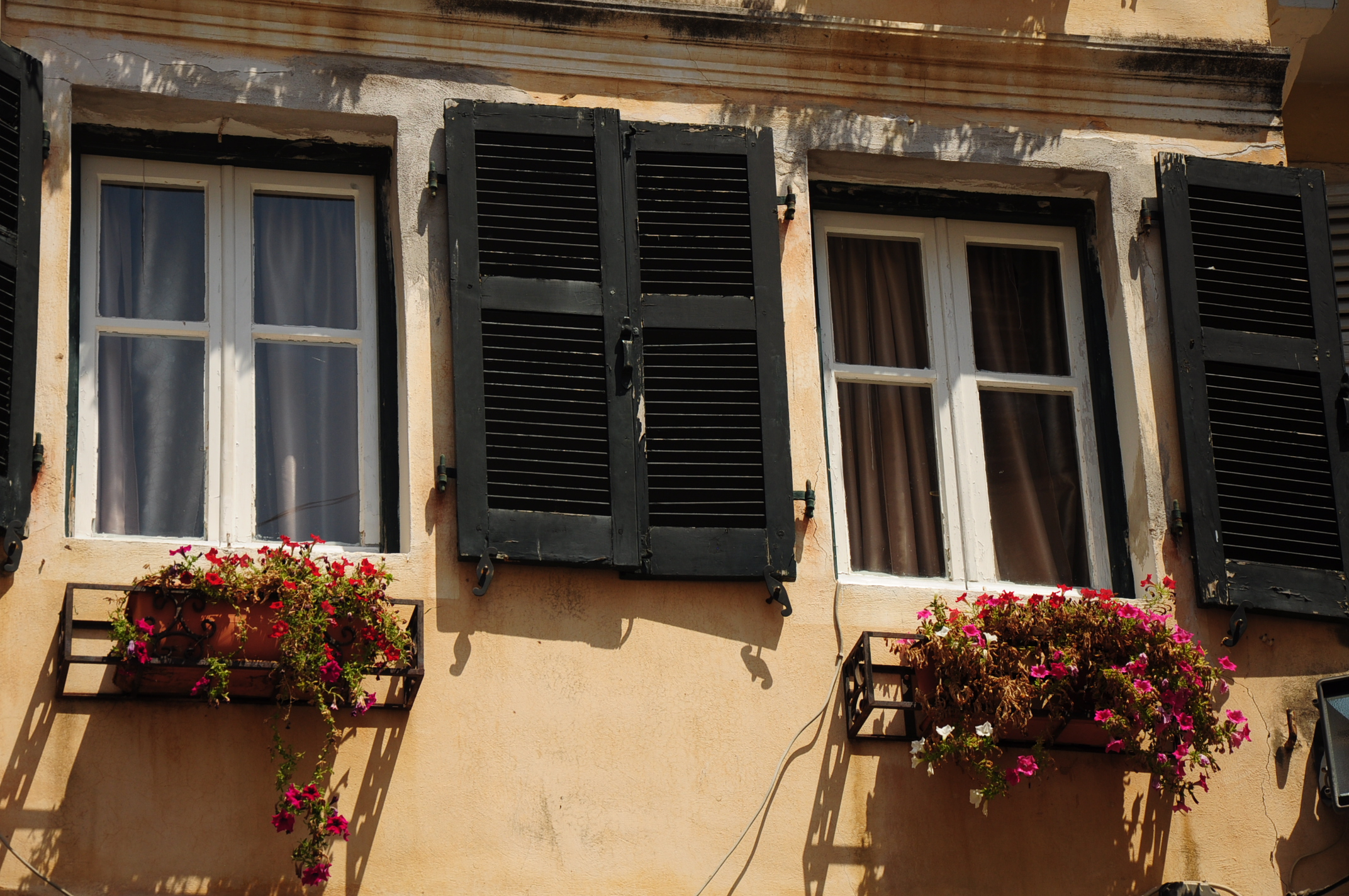 Windows in Corfu City
