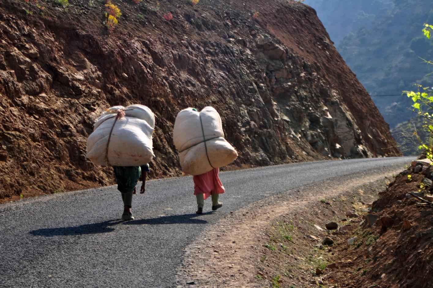 Women carrying hay