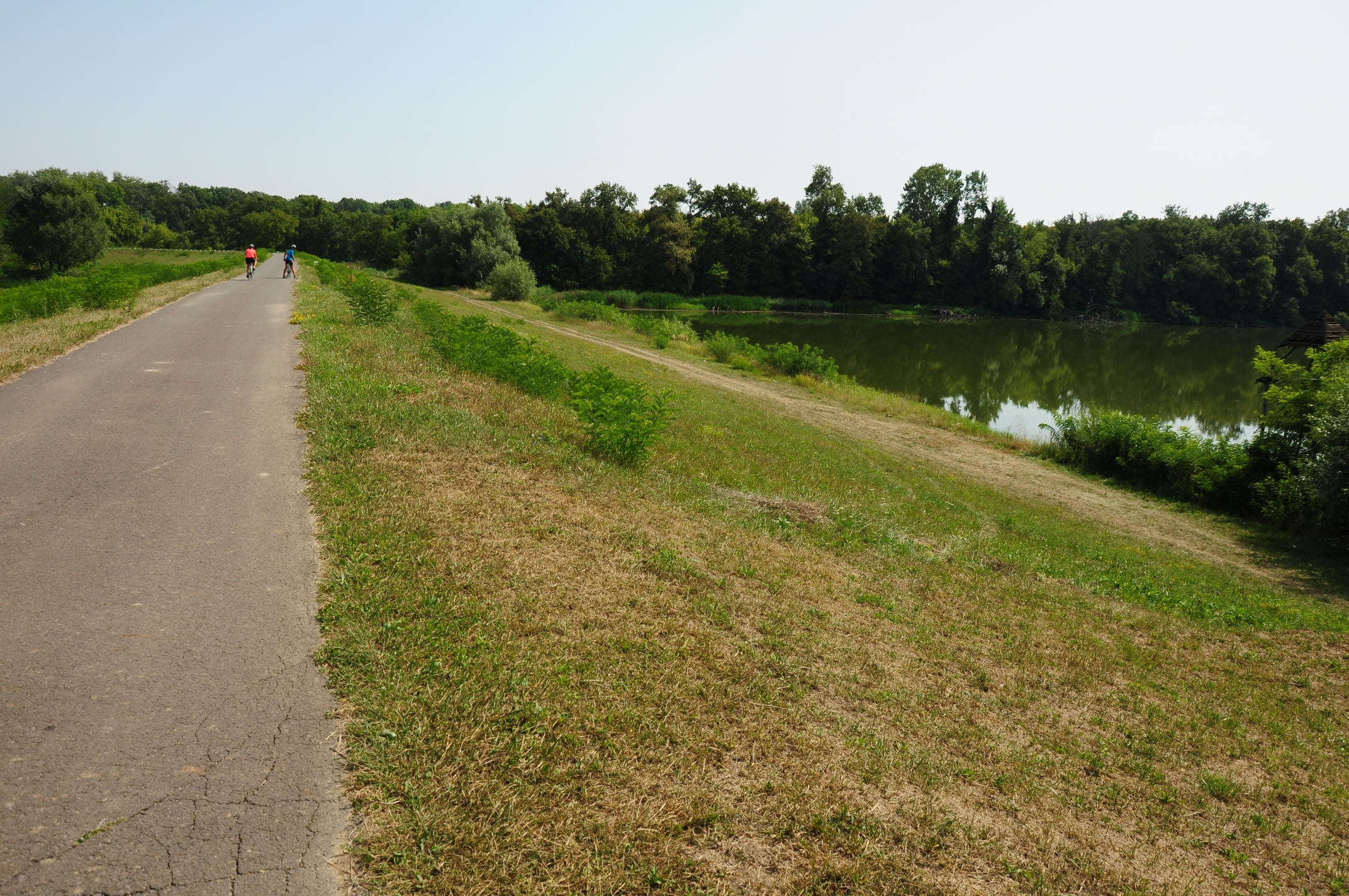 Cycling past the river Tisza