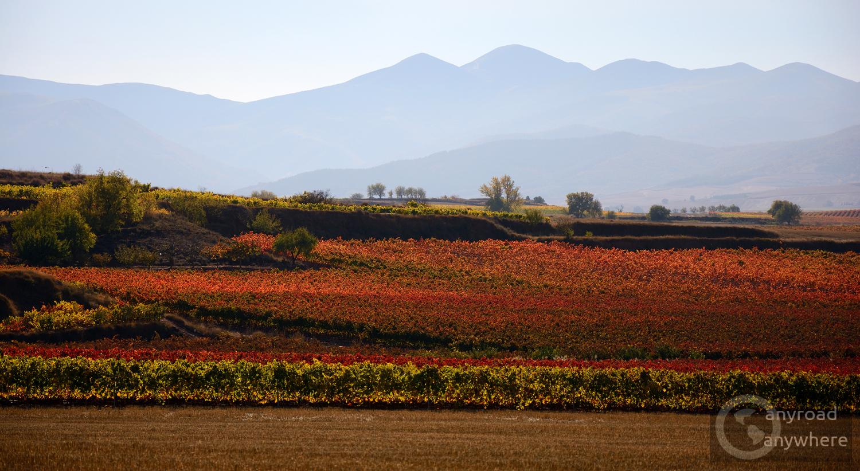 Colorful landscape near Azofra