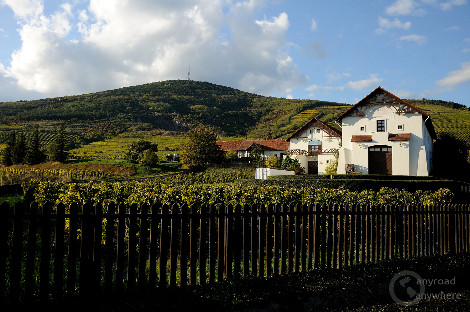 A nicely renovated traditional wine house