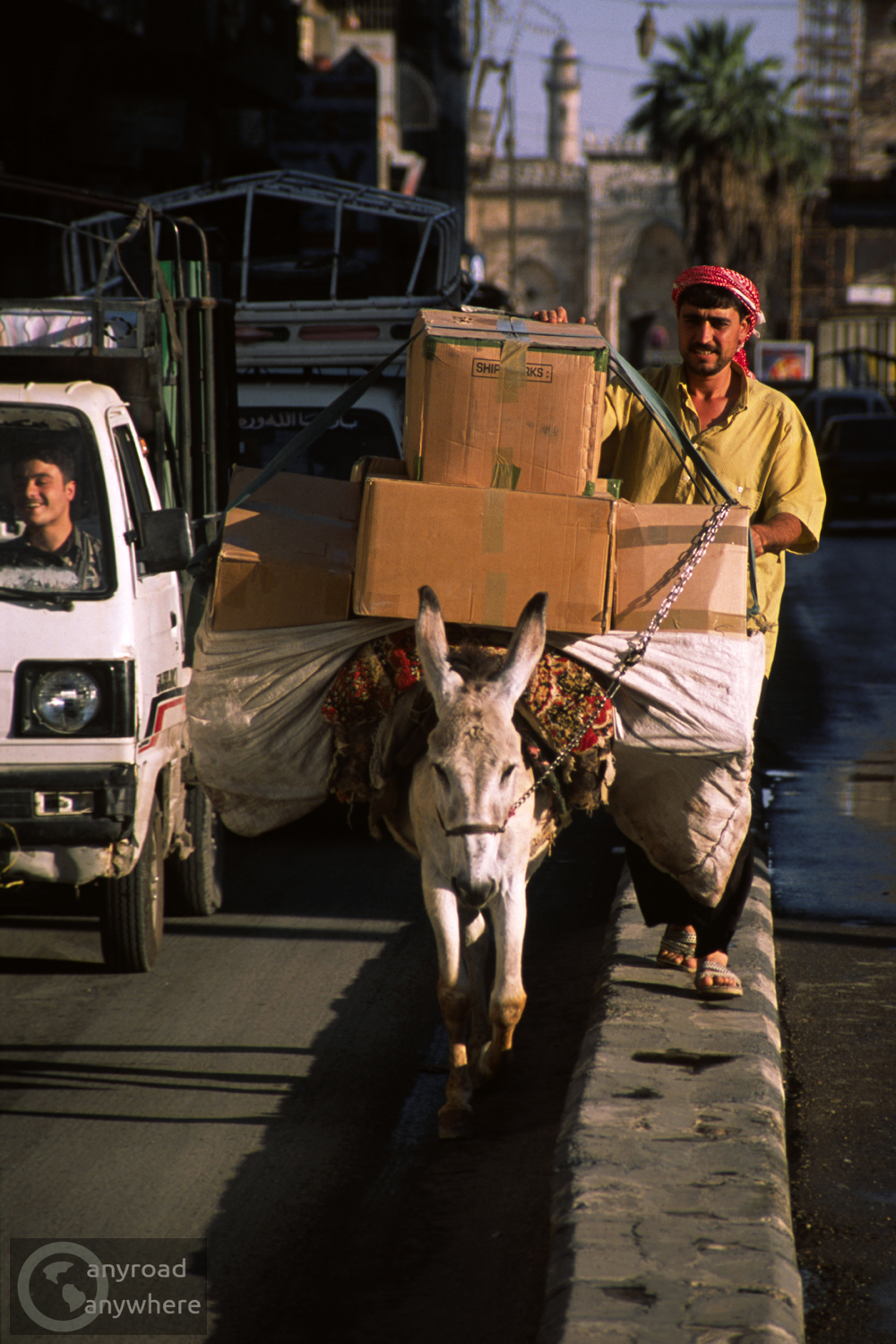 Donkey with its owner on a busy road in Aleppo