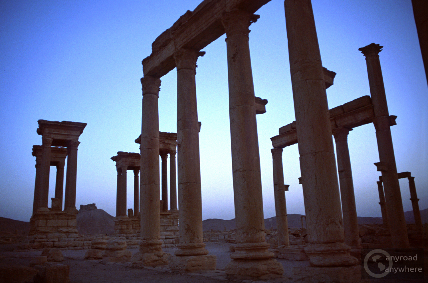 The slender columns of Palmyra in the light of the setting sun